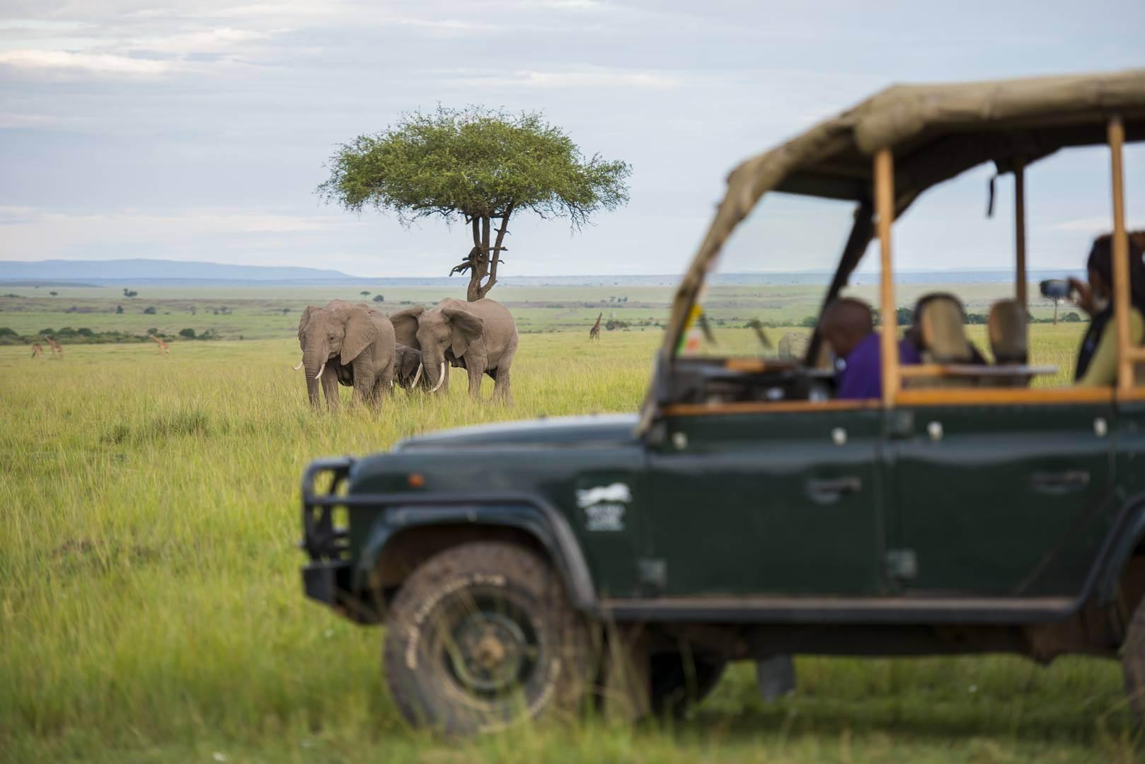 Masai-Mara-other-game-drive